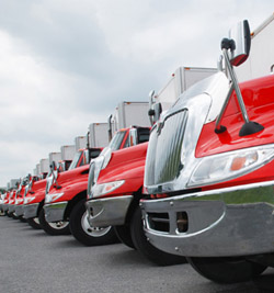 Photo of trucks in a row.